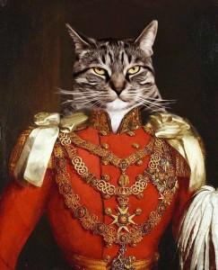 Cat_Prince_Albert